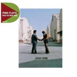 Pink Floyd - Wish You Were...