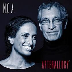 Noa - Afterallogy - LP 180 Gr.